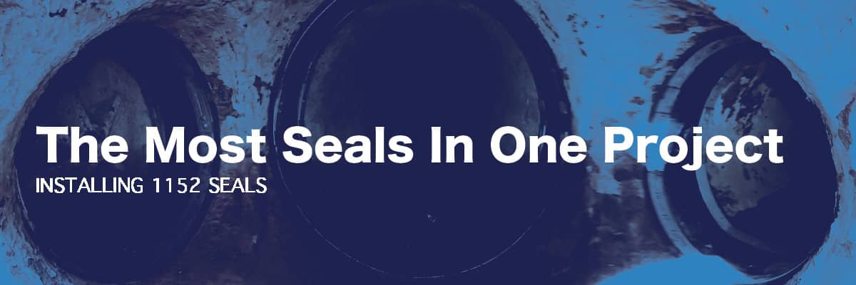 three seals installed to protect the joints, 'The Most Seals In One Project, Installing 1152'